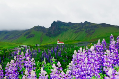 A beautiful view along the south coastal drive of Iceland.