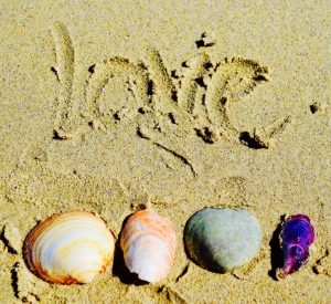 Love some good colourful shells...