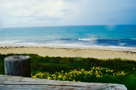 Stormy at the beach today, but still very beautiful. Kind of like life right? Stormy at times but still very beautiful.