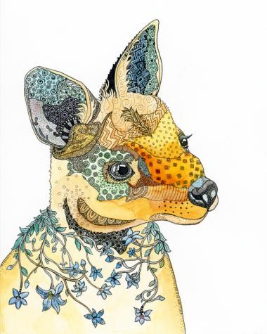 wallabycolour-800x1000