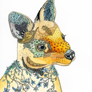wallabycolour-800x1000